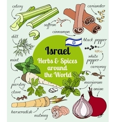 Israel herbs and spices vector image