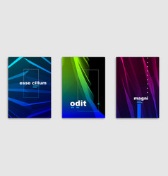 linear minimal trendy brochures set design cover vector image