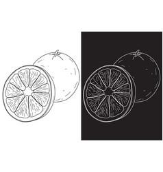 Orange hand drawn sketch vector