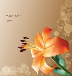 orange lilly on abstract background vector image vector image