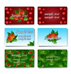 Set of six cards with Holly berry and fruit vector image