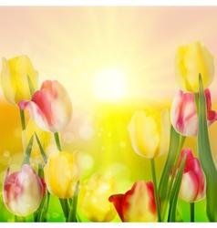 Beautiful bouquet of tulips EPS 10 vector image vector image
