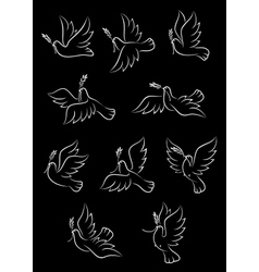 Flying doves with olive tree branches vector image vector image