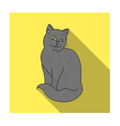 nebelung icon in flat style isolated on white vector image vector image