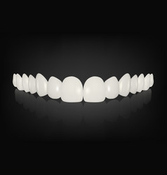 3d realistic render white denture set vector