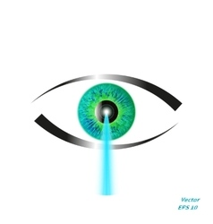 Concept of laser vision correction vector