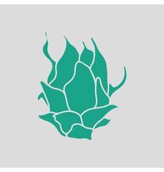 Dragon fruit icon vector