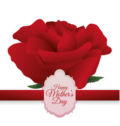 happy mothers day beautiful red rose card vector image
