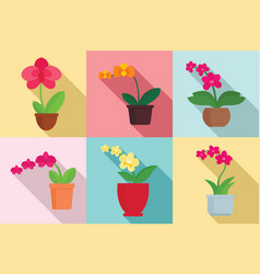 orchid icons set flat style vector image