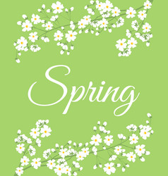 spring flowers on tree branch vector image vector image