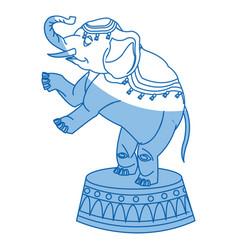circus elephant as acrobat animal standing trick vector image