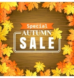 Autumn sale on wooden background vector image
