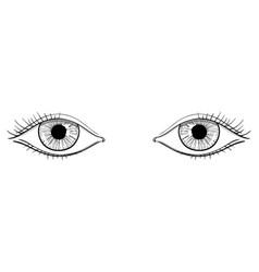 human womans eyes hand drawn sketch vector image