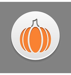 Pumpkin icon Vegetable vector