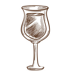 wine in glass alcohol drink or grape beverage vector image