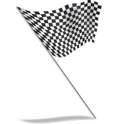 Chequered flag flying vector