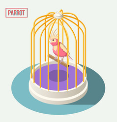 Parrot in cage isometric composition vector