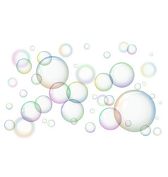 shiny soap bubbles on white background vector image