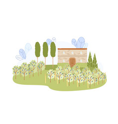 Vineyard farm with old house and grapevine row vector