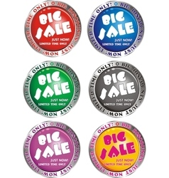 Big discount - signs buttons vector image vector image