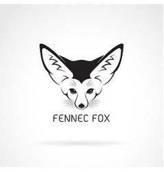 fennec fox head on a white background wild vector image