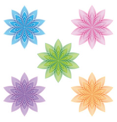 set of lotus flowers on a white background vector image