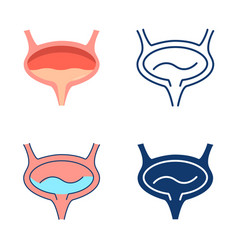 Bladder icon set in flat and line style vector