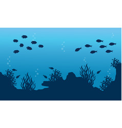 collection of underwater landscape with fish vector image