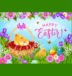 easter eggs chicks and flowers in basket vector image