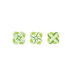 leaf pattern leaves icon logo vector image
