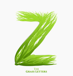 Letter z of juicy grass alphabet green z vector