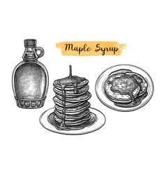 pancakes with maple syrup vector image