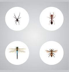 Realistic emmet damselfly wasp and other vector