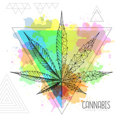 Realistic hand drawing and geometric cannabis vector