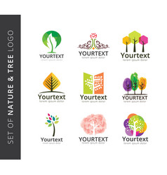 set nature and tree logo vector image