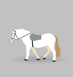 white horse on gray background vector image
