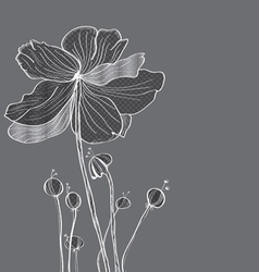 floral gray card vector image