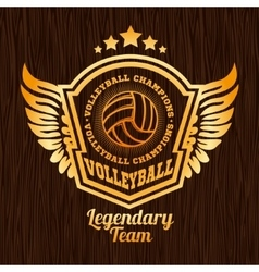 Gold volleyball emblem on the wooden texture vector image