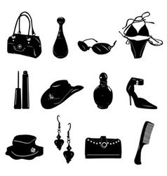 woman accessories vector image