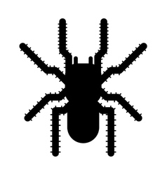 Black spider insect danger silhouette icon vector