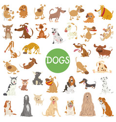cute dog characters big set vector image