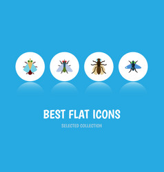 Flat icon buzz set of mosquito fly dung and vector