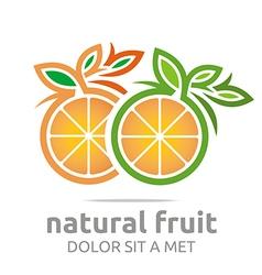 natural fruit orange fresh lime leaves design vector image