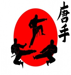 three silhouettes karate vector image