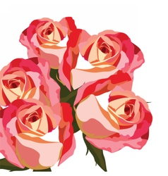 Watercolor Red rose flower vector