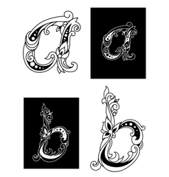 Two floral letters A and B vector image