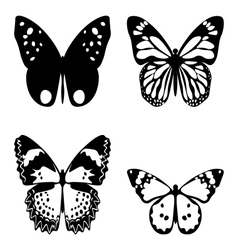 Butterfly black and white vector