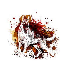 Color a german shepherd vector