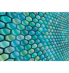 Hexagonal cells background vector