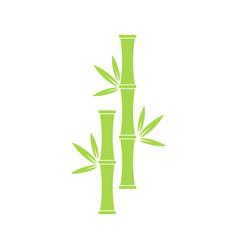 icon bamboo tree vector image